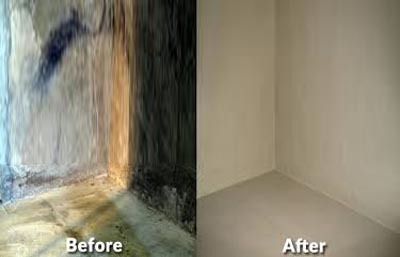 basement waterproofing rochester ny webster drainage service greece